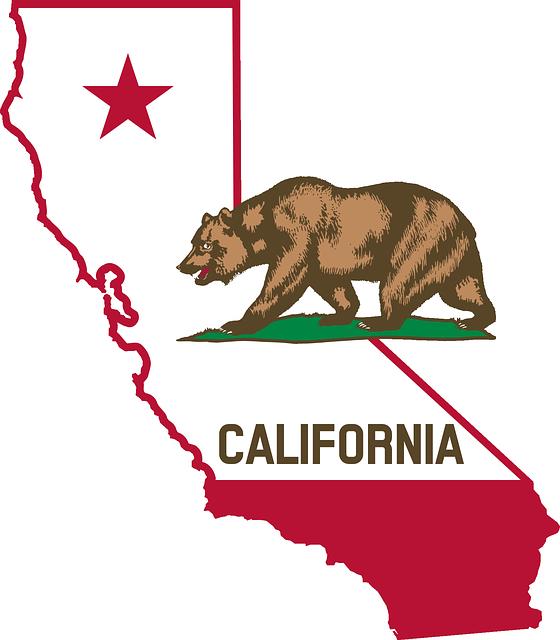 california-bear